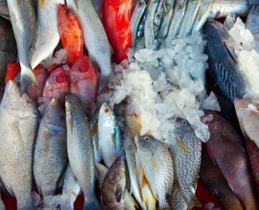 Fischbuffet: Jeden Freitag